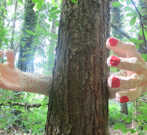 Installation: Tree Hugs, Body & Soul Festival Ireland 2014